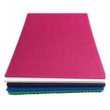 pp corflute sheet